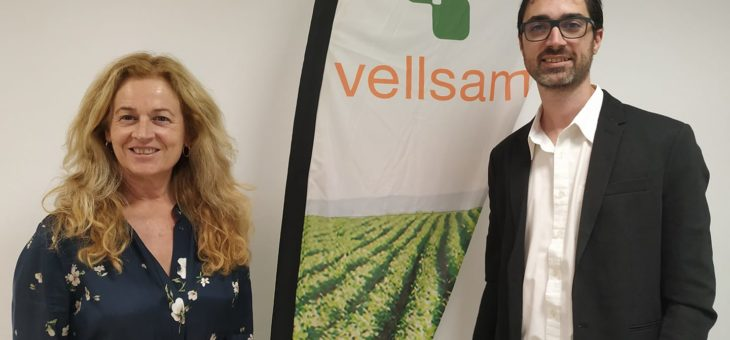 dpbmedia renueva con Vellsam Materias Bioactivas